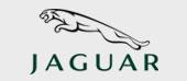 30 Jaguar
